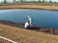 Rentative Pond