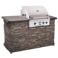 "American Outdoor Grill 24"" built-in"