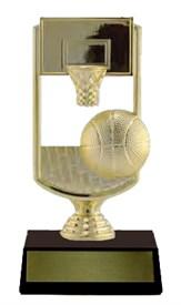 Basketball Hoop ECP 6