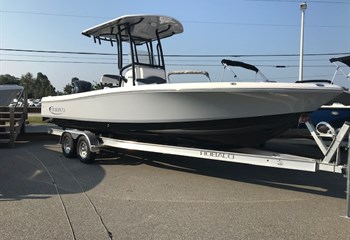 2019 Robalo R246 Cayman S liquid-unknown-field [type] Boat